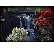 Great Falls Spring Foliage Photographic Print