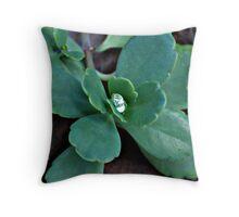 Diamond Droplet Throw Pillow