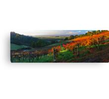 Windy Ridge Winery Canvas Print