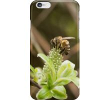Bee arched over a Mulberry flower iPhone Case/Skin