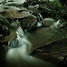 Spring Runoff by Kory Trapane