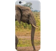 Elephants - Baby with Mother iPhone Case/Skin