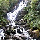Irish Waterfall by Dan Shiels