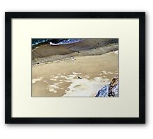A Gull and His Shadow Framed Print