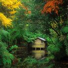 The Boatshed. by Ern Mainka