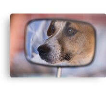 How much is that doggy in the Mirror Metal Print