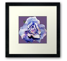 Cosmic rose Framed Print