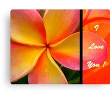 I Love You ! Canvas Print