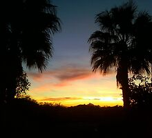 Phoenix Sunset by Jason Jaynes