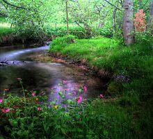 """""""Watery Apparition""""  by Bradley Shawn  Rabon"""