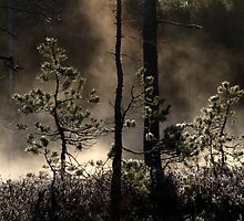 4.5.2015: May Morning Magic III by Petri Volanen