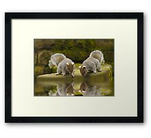 Double reflections Framed Print