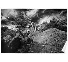 Granite Island (b&w) Poster
