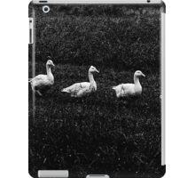 Marching Geese iPad Case/Skin