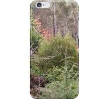 Autumn in the Garden #3 iPhone Case/Skin