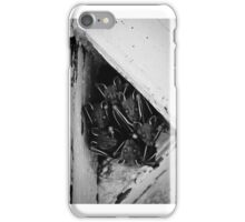 Bats staring in the camera. iPhone Case/Skin