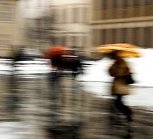Rain by Tiziano Cocciò