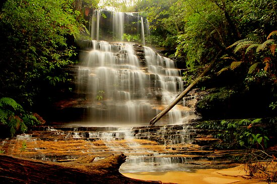 Junction Falls, New South Wales. by Andy Newman