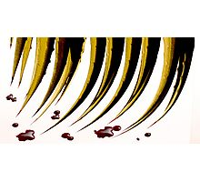 RED QUILL Photographic Print
