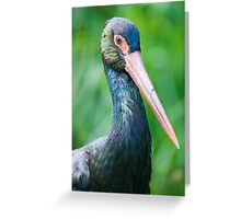 lilford's crane Greeting Card
