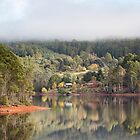 Mist at Lake  Barrington by Robert Armitage