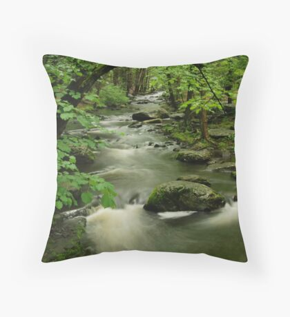 Forest Stream Throw Pillow