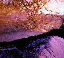 'A Desert Wind' by DLUhlinger