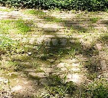 Garden Path by Brian Ledbetter