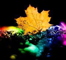 Autumn Rainbow by David Charniaux