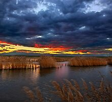 Sunset at the marshlands of Aliakmonas river by Hercules Milas