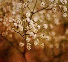 Tiny Memories by Ingz