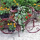 Flower Bike by raptornurse