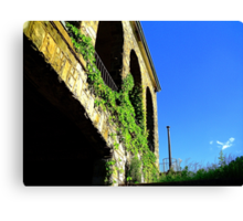 Ivy And Arches  Canvas Print