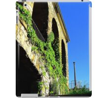 Ivy And Arches  iPad Case/Skin