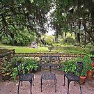 Terrace Garden by raptornurse