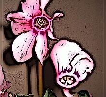 Cyclamen Comic PInk  by Ladydi