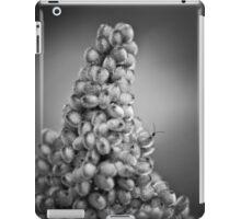 climbing Mount Seuss iPad Case/Skin