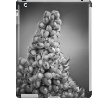climbing Mount Seuss iPad Case/Skin