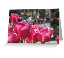 Tulips in the city. Greeting Card