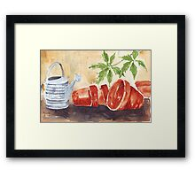 A Shelf in my Garden Shed Framed Print