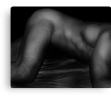 Bodyscape 7 Canvas Print