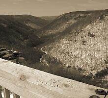 Lindy Point Overlook in Winter by rabeeker