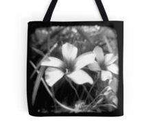 Oxalis - Through The Viewfinder Tote Bag