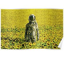 Stranded in the sunflower field Poster