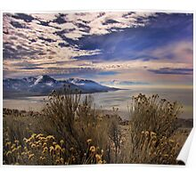Antelope Island Poster