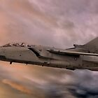 Panavia A-200 Tornado at Sunset by © Steve H Clark Photography