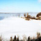Winter Fog by terrebo