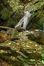 Autumn waterfall in Provence by Patrick Morand