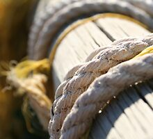 Tarcoola Ropes by Stephen Humpleby