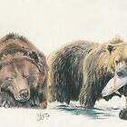 North American Grizzly Bear by BarbBarcikKeith
